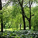 more green by smook