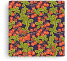 mysterious night in space garden with cherry tomatoes and basil Canvas Print