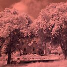 House and Trees IR by Neil Bygrave (NATURELENS)