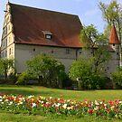 Spring in Dinkelsbuhl by annalisa bianchetti