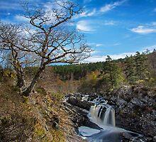 Rogie Falls by Innes Mackay