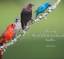 Diversity by Bonnie T.  Barry
