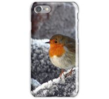 Robin on Cromarty sea wall iPhone Case/Skin