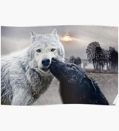 wolves kiss Poster