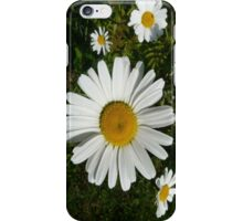 Floating Daisys iPhone Case/Skin