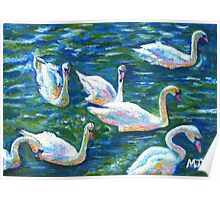 Acrylic painting, Swans nature art Poster