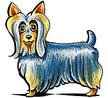 So Silky Terrier by offleashart