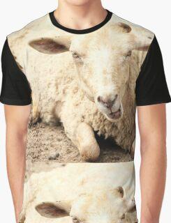 sheep Graphic T-Shirt