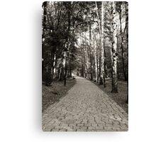 Monochrome cobblestone alley in the park Canvas Print