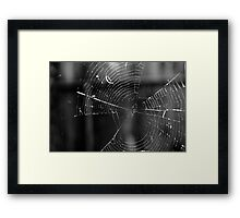 House of Webs  Framed Print