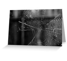 House of Webs  Greeting Card