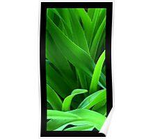 Thru the Grass Poster