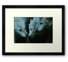 Strength of the pack Framed Print