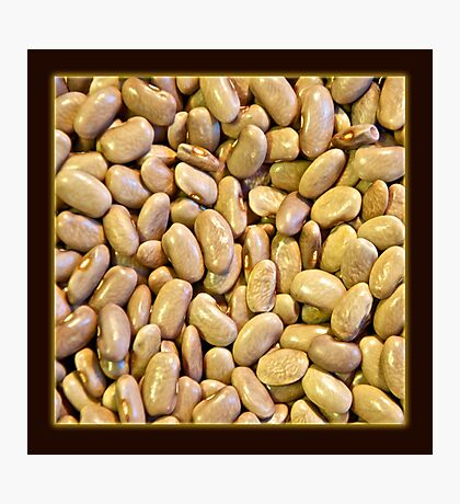 Dried Bean 1 Photographic Print