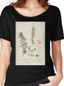Plantae selectae quarum imagines ad exemplaria naturalia Londini in hortis curiosorum nutrita Christoph Jacob Trew 1773 077 Women's Relaxed Fit T-Shirt