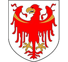 Coat of Arms of South Tyrol  Photographic Print