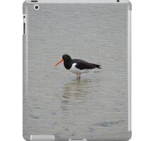 Oystercatcher iPad Case/Skin