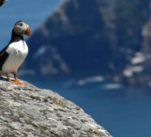 Puffin Skellig Island, Ireland Sticker