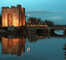 Bunratty Castle At Night, County Clare, Ireland by Noel Moore Up The Banner Photography
