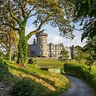 dromoland castle hotel golf club county clare ireland by Noel Moore Up The Banner Photography