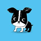 Boston Terrier by taichi