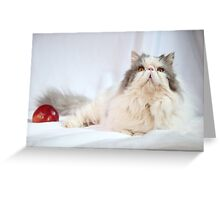 The Magnificats Ugs Card #1 Greeting Card