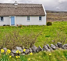 rural irish cottage in the burren countryside, county clare, ireland by Noel Moore Up The Banner Photography