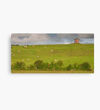 rural ireland scenic nature cows countryside landscape Canvas Print
