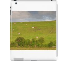 rural ireland scenic nature cows countryside landscape iPad Case/Skin