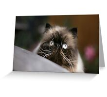 The Magnificats Tom Card #2 Greeting Card