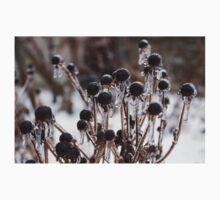 Toronto Ice Storm 2013 - Frozen Black Eyed Susans  Baby Tee
