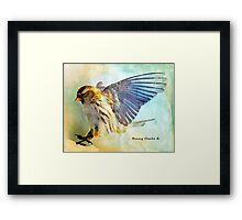 Flight I (All proceeds donated to Cancer Research) Framed Print