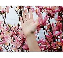 Hand & Flowers Photographic Print