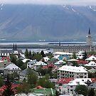 Reykjavik from Above by Martha Sherman