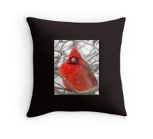 More Snow, Are You Kidding Me? Throw Pillow