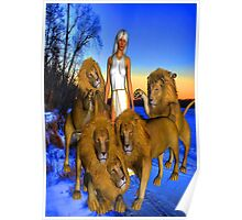 Lions in Winter Poster