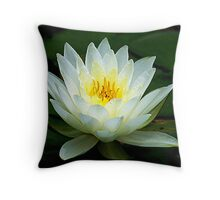 Water Lily.. Throw Pillow