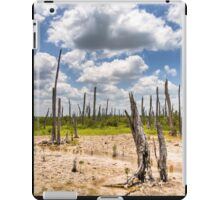 Ghost Forest - Mexican Gulf Coast in the Yucatan iPad Case/Skin