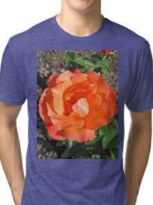 Orange Rose Tri-blend T-Shirt