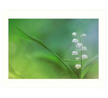 Lily of the Valley... Art Print