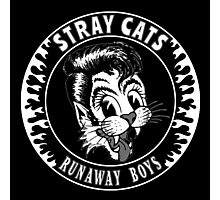 Stray Cats  (Runaway Boys) Photographic Print