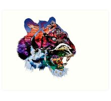 Tiger Collage  Art Print