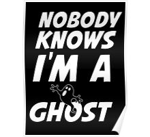 nobody knows i'm a ghost Poster