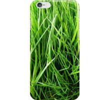 Green stalks iPhone Case/Skin