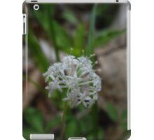 Dwarf Ginseng iPad Case/Skin