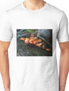 Mystery Mushrooms Unisex T-Shirt
