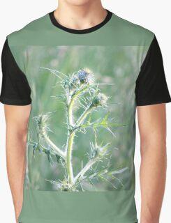 Spring Sunset on Bull Thistle Graphic T-Shirt