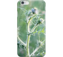 Spring Sunset on Bull Thistle iPhone Case/Skin