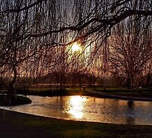 The gloaming by AuraTodd