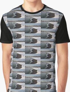 Winter Beach - Lake Ontario, Toronto, Canada Graphic T-Shirt